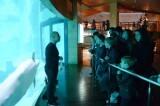 alumnos-taller-sensaciones-marinas-oceanografic
