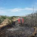 incendio caudete 2