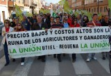 manifestacion-de-la-unio