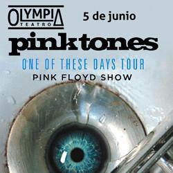 OLYMPIA_pinktones_250x250px