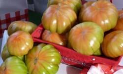 Tomates-del-Perello-370x215