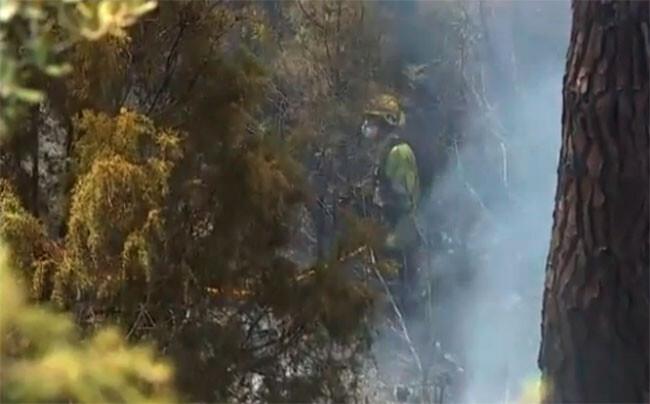 campana-prevencion-de-incendios-2014