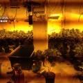 foto zulo marihuana