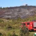 bomberos-valencia-forestal-2014