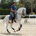 doma-clasica-feria-internacional-del-caballo