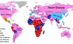 enfermedades-1930015