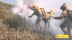 Spot para recordar la virulencia de los incendios forestales y recabar la colaboración ciudadana