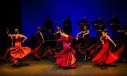 Flamenco-en-el-alama-PORTADA-370x215