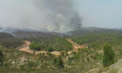 Incendio El Campillo 1_tcm7-338220_noticia