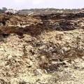 Orihuela-Alicante-vertedero-abandono-gases_toxicos-hedor_MDSVID20140715_0073_17