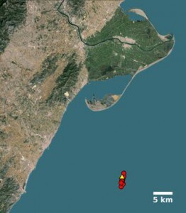 Mapa de la localización precisa (círculos) de los once mayores terremotos (con magnitudes entre 3.3 y 4.3), en las proximidades de la plataforma del Proyecto Castor (triángulo), al sur del Delta del Ebro.