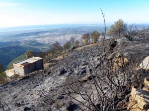 incendio vall de uxo (1)