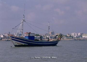 130925 barco pesca 19561_tcm7-298219_noticia