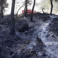 incendio (INT)
