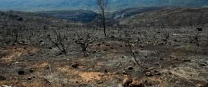 incendio en castellon (PORTADA)