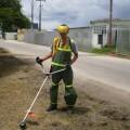 mantenimiento-zona-verde