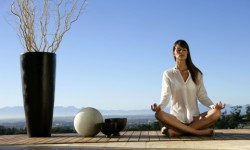 480x500_fitbox-tipos_de_yoga
