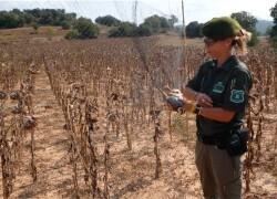 Cuerpo de Agentes Rurales del Departamento de Agricultura, Ganaderia, Pesca, Alimentacion y Medio Natural