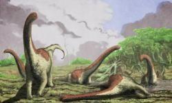 Descubierta-una-nueva-especie-de-titanosaurio-en-Tanzania_image_380
