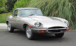 Jaguar-1943681