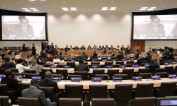 La Asamblea General de la ONU en acción