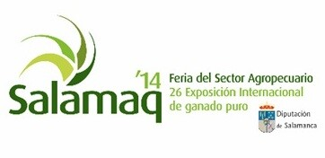 Logo Salamaq14_tcm7-342723_noticia