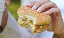 No existe evidencia científica que apoye la hipótesis de que los alimentos involucran mecanismos cerebrales comparables a las drogas de abuso. / Fotolia