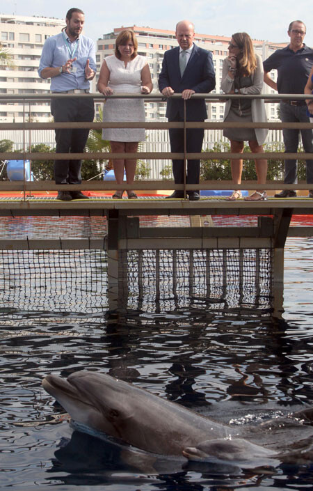 consellers-delfin-oceanografic