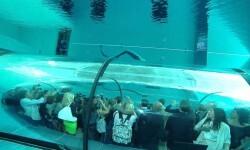 La piscina más profunda en el mundo