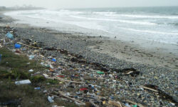 Playa contaminada de Japón