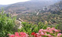 pueblo de Battir whc2014_palestine04 (4)