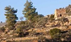 pueblo de Battir whc2014_palestine04 (6)
