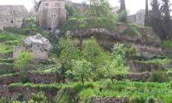 pueblo de Battir whc2014_palestine04 (7)