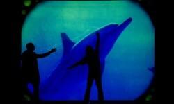 '20.000 leguas de viaje submarino'. (Foto-Diputación)