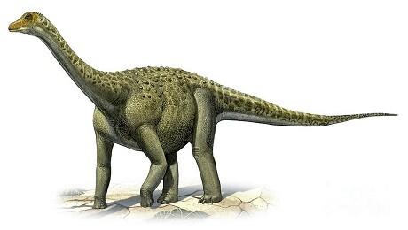 Aspecto de un titanosaurio. (Foto-Agencias)