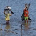 Consecuencias devastadoras del tifón Hagupit. (Foto-Agencias)