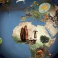 Describen-mas-de-80.000-nuevas-especies-de-hongos_image_380