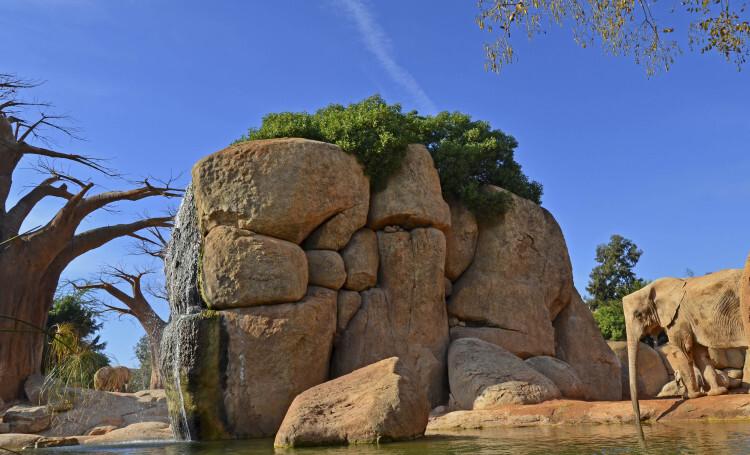 Diciembre en Bioparc Valencia - 2014 - lago de los elefantes