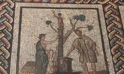 Imagenes-en-los-mosaicos-romanos-para-ahuyentar-a-los-envidiosos_image648_365 (1)