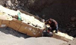Investigadores preparando la protección del cuello del dinosaurio para su traslado. (Foto-ICP)