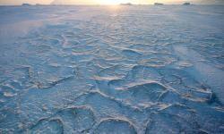 La-radiacion-ultravioleta-aumenta-la-capacidad-de-captura-de-CO2-en-el-Artico_image_380