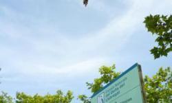 Las-aves-adelantan-sus-cantos-al-amanecer-por-el-ruido-de-los-aeropuertos_image_380