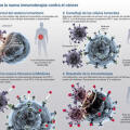 Terapia inmune
