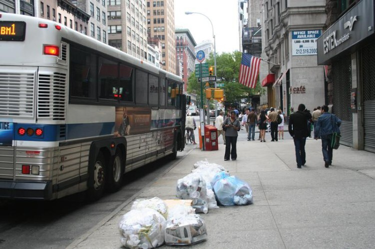 Los-insectos-de-Nueva-York-eliminan-la-basura-de-las-calles_image800_