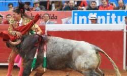 Toroembravecido hirió de dos cornadas a torera mexicana y a cuatro de sus ayudantes (10)