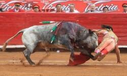 Toroembravecido hirió de dos cornadas a torera mexicana y a cuatro de sus ayudantes (3)