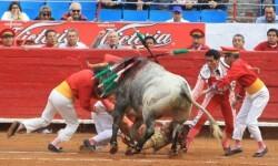 Toroembravecido hirió de dos cornadas a torera mexicana y a cuatro de sus ayudantes (5)