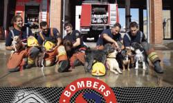Bomberos del Consorcio de Valencia protagonizan un calendario solidario a favor de una protectora de animales