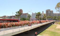 puente-de-las-flores