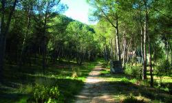 Ruta de senderos de la Vall d'Albaida